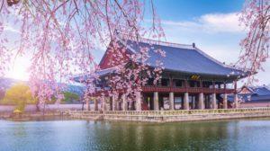 144-Korea-voyage-de-tunis